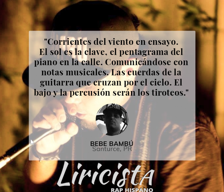 Bebe Bambu – Quote